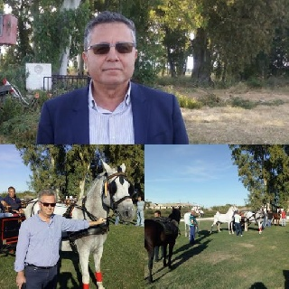 Δήμος Πηνειού: Ιδρύεται Ιππικό Κέντρο με πρωτοβουλία Ανδρέα Μαρίνου