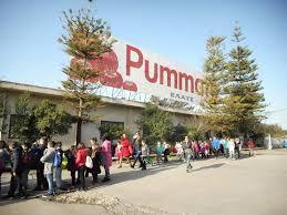 Στη ΜΙΝΕΡΒΑ το εργοστάσιο της Pummaro στη Γαστούνη