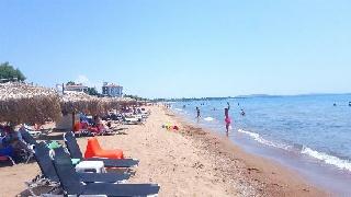 Οι παραλιακές θέσεις στο Δήμο Ήλιδας που θα δημοπρατηθούν για καντίνες το Καλοκαίρι